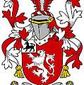 Henn Coat Of Arms Irish by Heraldry