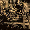 Her Bike by Bob Orsillo