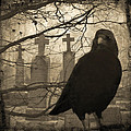 Her Graveyard by Gothicrow Images