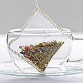 Herbal Tea Bag In Cup by Elena Elisseeva