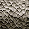 Herculaneum Wall by Eric Tressler