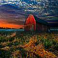 Here Comes The Light by Phil Koch