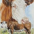Hereford Cattle by Barbara Keith