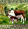 Hereford Cow And Calf Blank Christmas Card by Olde Time  Mercantile