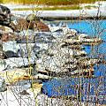 Hereford Inlet Rock Formations by Pamela Hyde Wilson