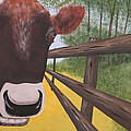 Here's Looking At Moo by Tim Townsend