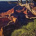 Hermit Rest Grand Canyon National Park by Bob and Nadine Johnston