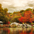 Hernshead In October by Jessica Jenney
