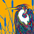 Heron by Derrick Higgins