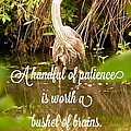Heron With Quote Photograph  by Susan Garren