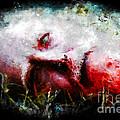 Hershel's Head by Dead Art