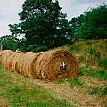 Hey- Hay Roll by Jeffrey Canha