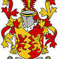 Heyne Coat Of Arms Irish by Heraldry