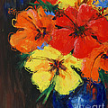 Hibiscus Colours by Karen Bower