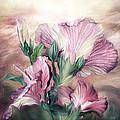 Hibiscus Sky - Pastel Pink Tones by Carol Cavalaris