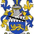 Hickey Coat Of Arms Irish by Heraldry