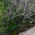 Hickory Creek 6902 by Ricardo J Ruiz de Porras