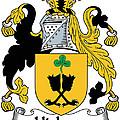 Hickson Coat Of Arms II Kerry Ireland by Heraldry