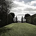 Hidcote by Christopher Rees