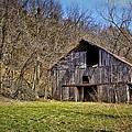 Hidden Barn by Cricket Hackmann