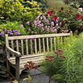 Hidden Garden Charm by Jessica Jenney