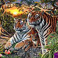 Hidden Images - Tigers by Steve Read