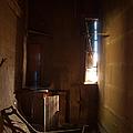 Hidden In Shadow by Fran Riley
