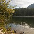 Hidden Lake No. 1 by Belinda Greb