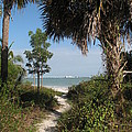 Hidden Path To The Beach by Christiane Schulze Art And Photography