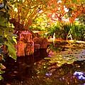 Hidden Pond by Amy Vangsgard