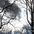 Hidden Sun by Brandi Maher