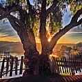 Hidden Sunset by Brian Maloney