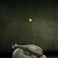 Hide My Self by Johan Lilja