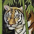 Hiding In The Bamboo by Wanda Dansereau
