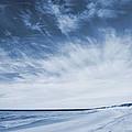 Higbee Beach Cyanotype by Jennifer Ancker