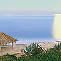 High Angle View Of Windansea Beach, La by Panoramic Images