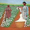 High Cotton by Fred Gardner