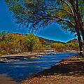 High Desert River Bed by Joseph Coulombe