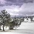 High Desert Snow by Saija  Lehtonen