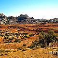 High Desert View by Robert Bales