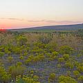 High Plains Desert Landscape by Nick  Boren