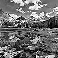 High Sierra Meadow by Cat Connor