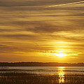 High Tide In The Marsh by Phill Doherty