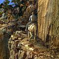 High Trail by Rick Reason