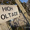 High Voltage by Tim Hester