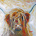 Highland Cow by Peter Tarrant