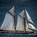 Highlander Sea by Ronald Grogan