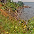 Highlands Coastline In Cape Breton Highlands Np-ns by Ruth Hager