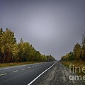 Highway Of Foliage by Richard W Lamoureux