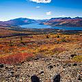 Hiker In Fall-colored Tundra by Stephan Pietzko